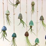Katie Sandels 'Katie & The Jellyfish'